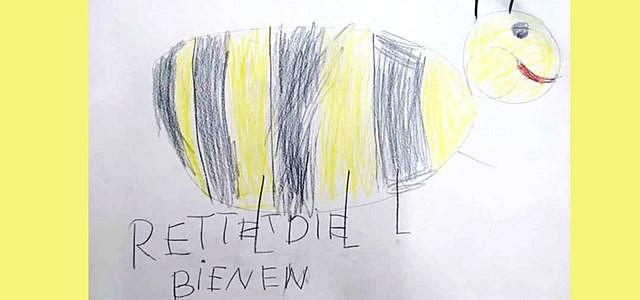 bienen helfen rettet die bienen