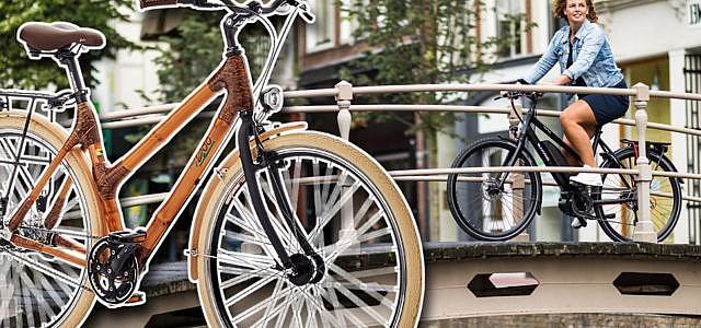 Nachhaltige-City-Bikes