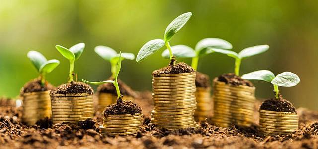 Gruene-Bank-Finanzen-