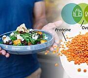 vegetarisch essen ernährung