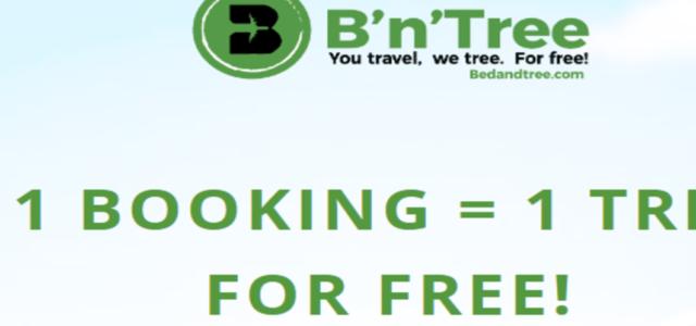 B'n'Tree