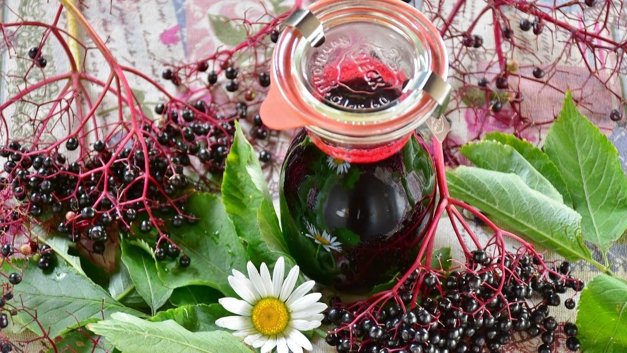 Holunderbeerensirup selber machen: Einfaches Rezept mit 3 Zutaten