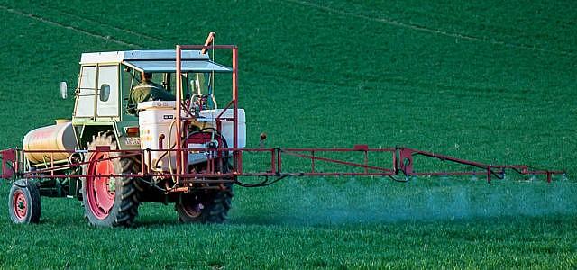 Glyphosat-Verbot in Deutschland ab 2024