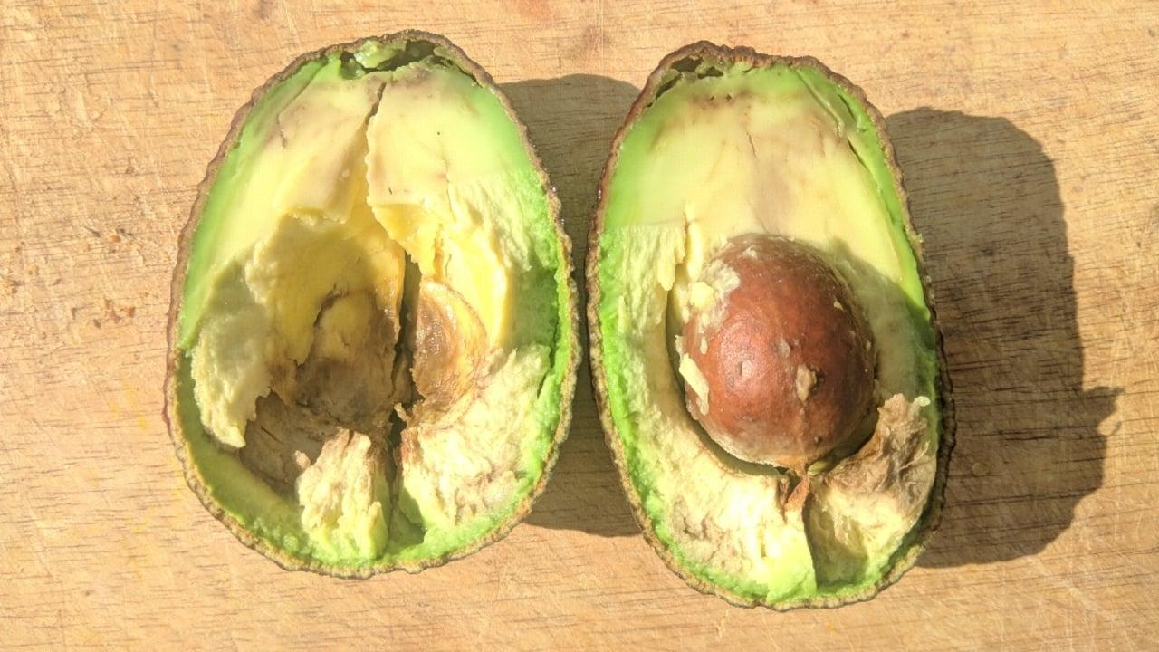 avocado innen braun