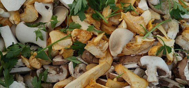Frische Pilze und Kräuter sind eine leckere Herbstmahlzeit.