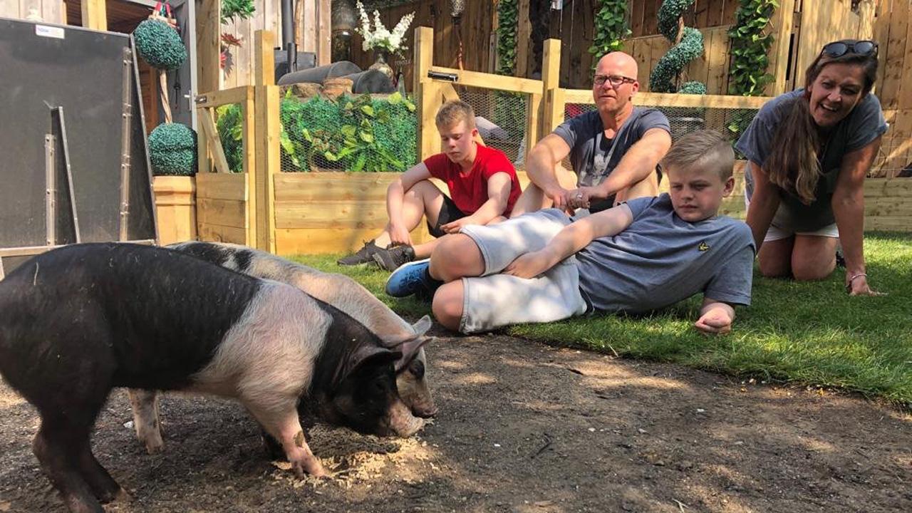 "Provokantes TV-Experiment: ""Werdet Vegetarier oder wir töten euer Tier"""