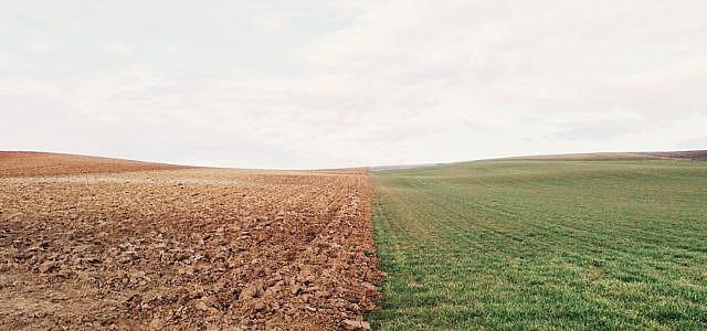 konventionelle landwirtschaft