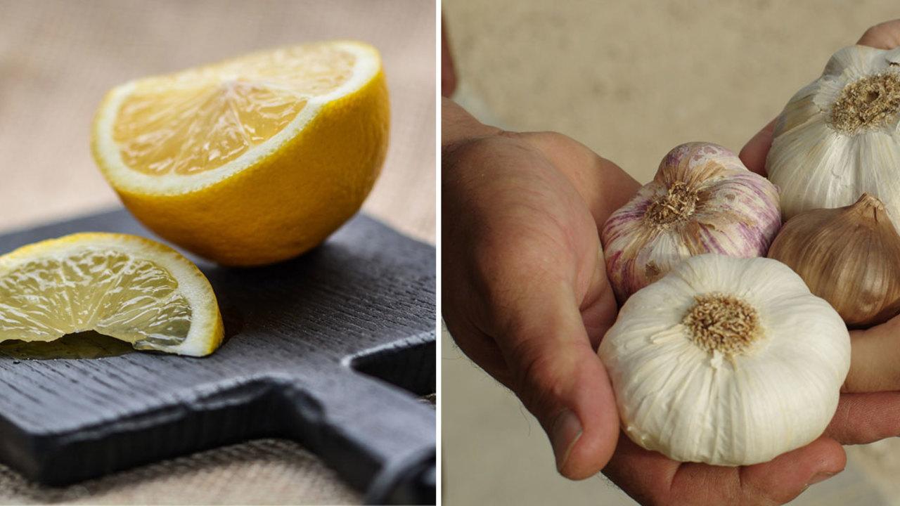Verbrennt Honig und Zitrone Bauchfett?