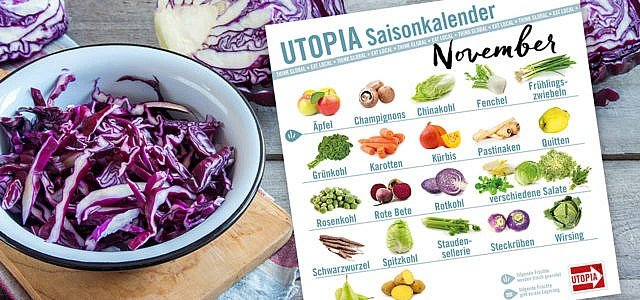 Utopia Saisonkalender November