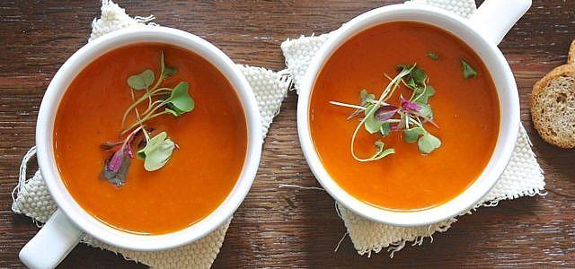 tomatensuppe aus frischen tomaten