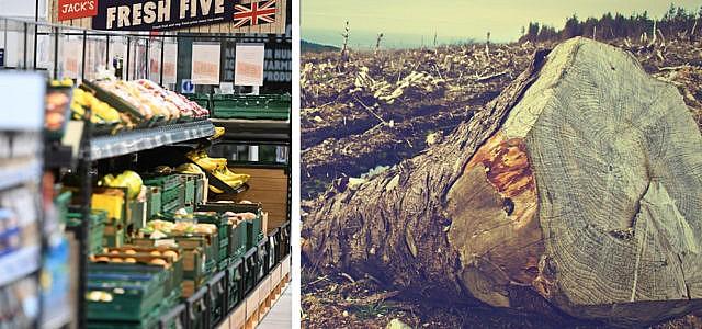 Brasilien-Boykott: britische Supermärkte drohen