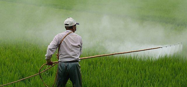 doppelstandards pestizide