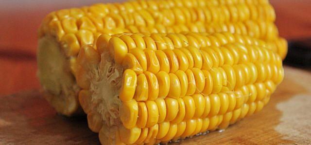 Maiskolben kochen