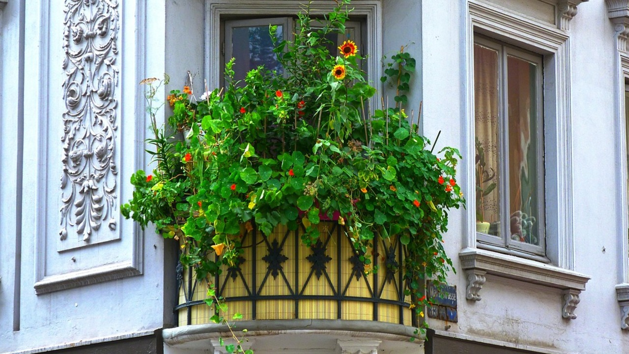 Sichtschutz Fur Den Balkon 5 Varianten Zum Selbermachen Utopia De