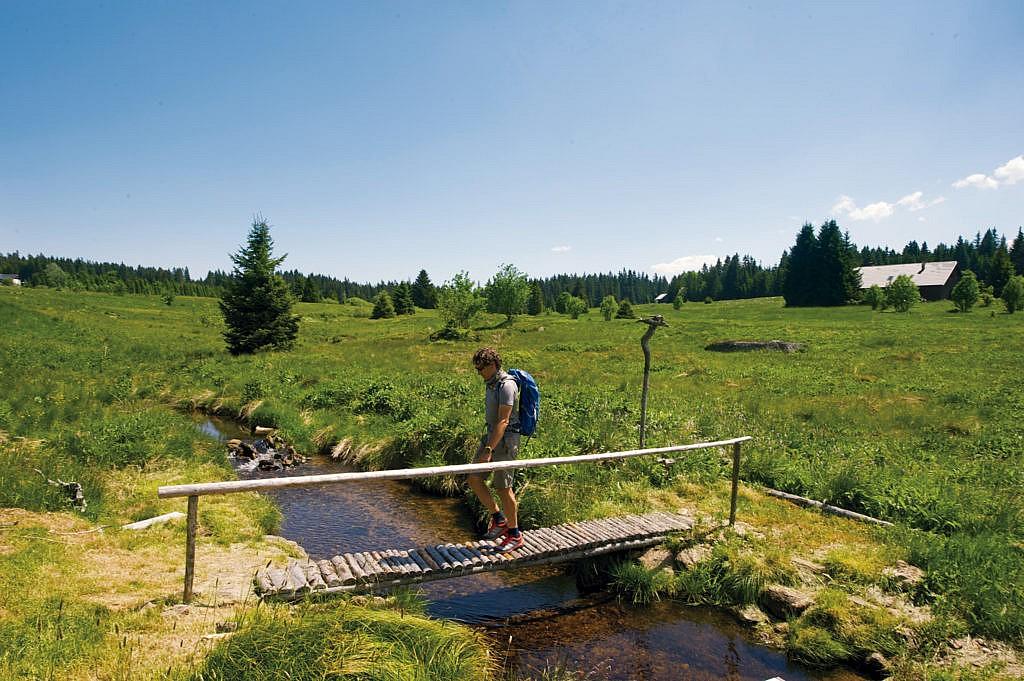 Ein tolles Wanderziel: der Böhmerwald