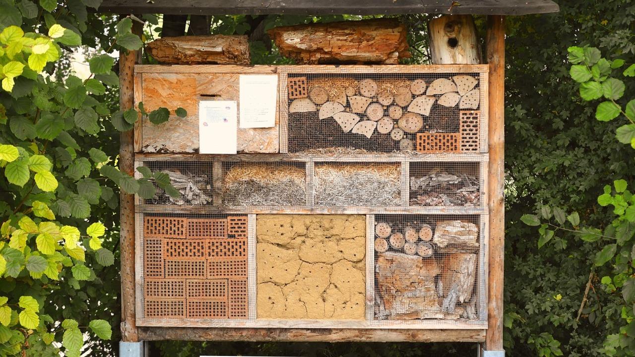 Insektenhotel-Standort-Der-richtige-Platz-f-r-Bienen-und-Co-