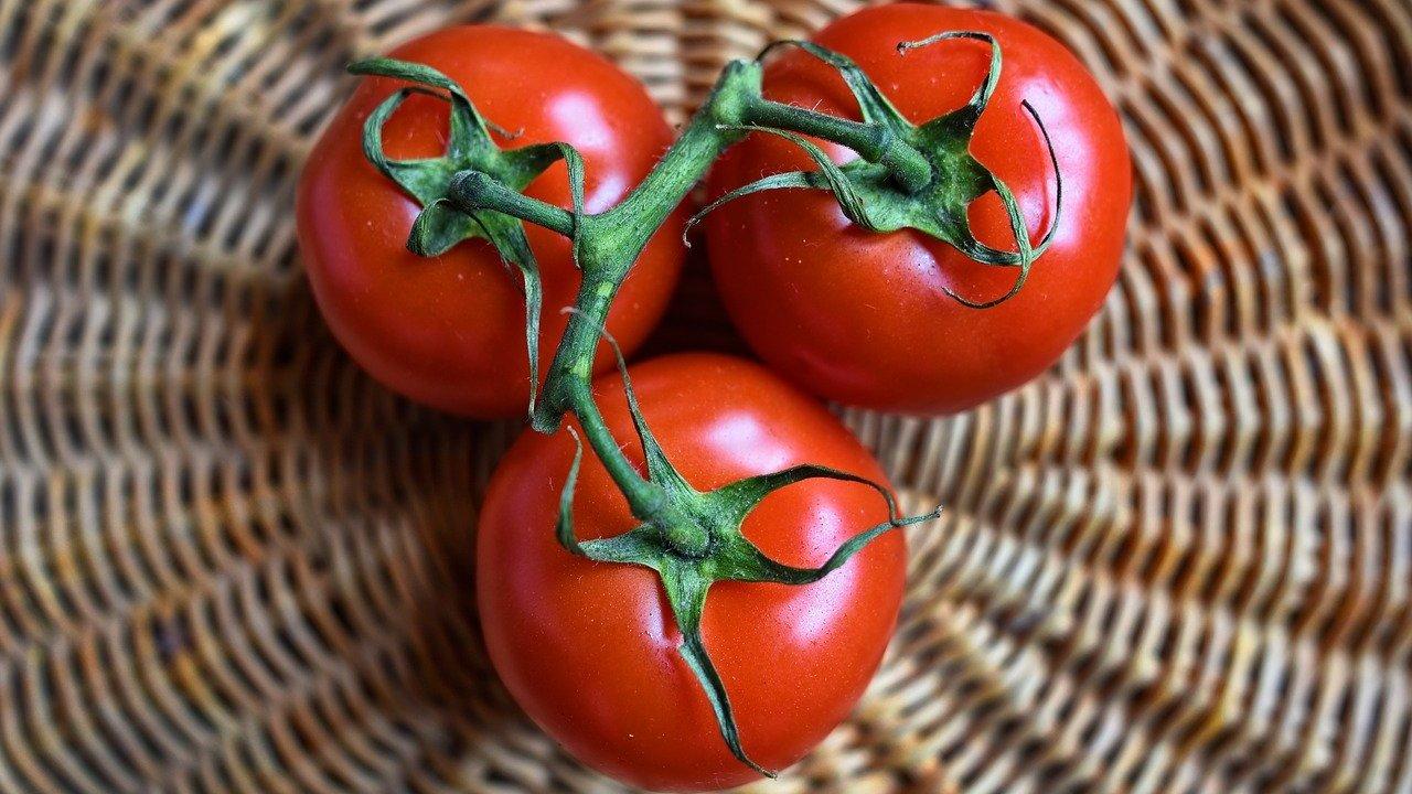 17+ Tomaten lagern So halten sich Tomaten lange   Utopia.de Bilder