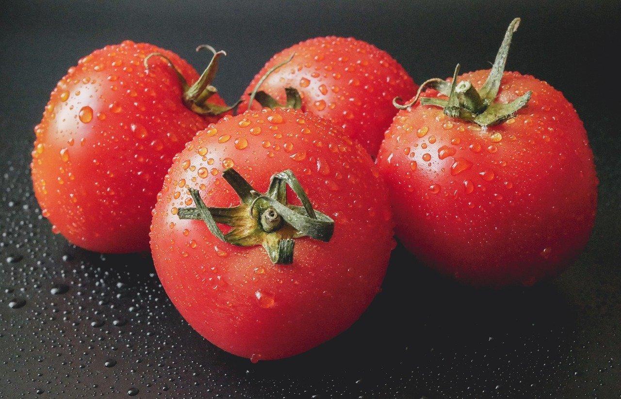 Tomaten lagern So halten sich Tomaten lange   Utopia.de
