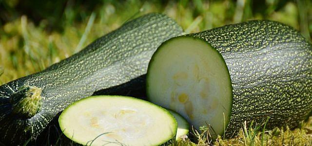 Zucchini roh essen