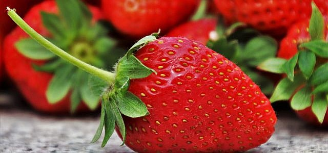 Erdbeere Nuss