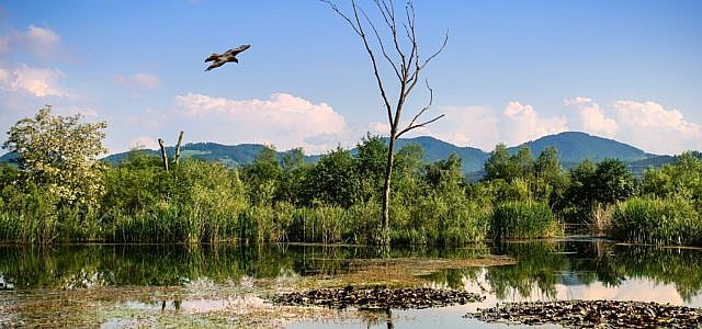 Naturschutzgebiete
