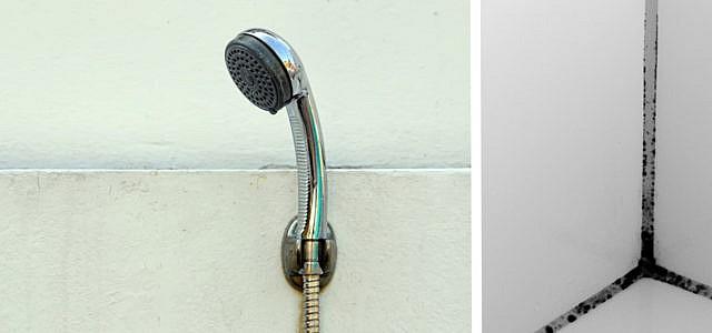 Duschkabine reinigen