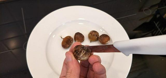 Maronen zubereiten, Esskastanien