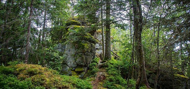 nationalpark deutschland