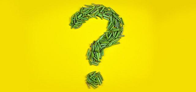vegan vegetarisch fragen lebensstil