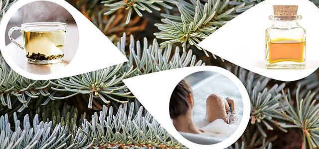 Weihnachtsbaum-upcyceln