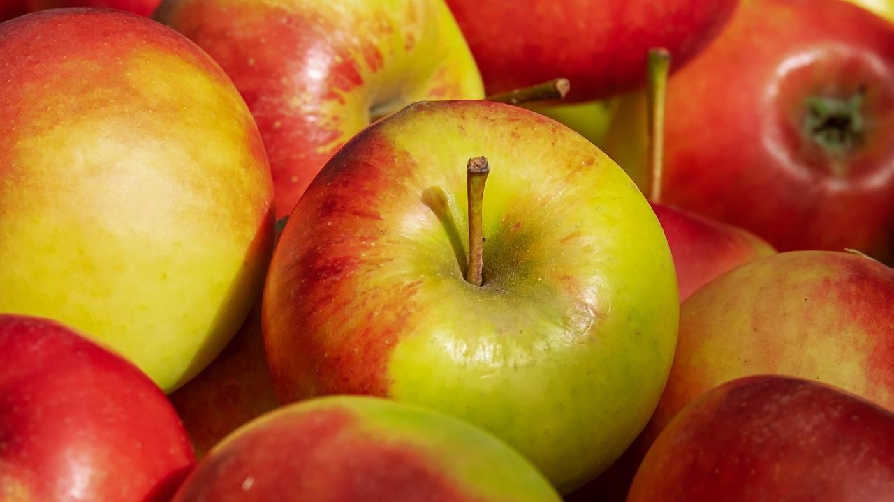 Elstar-Vor-und-Nachteile-der-beliebten-Apfelsorte