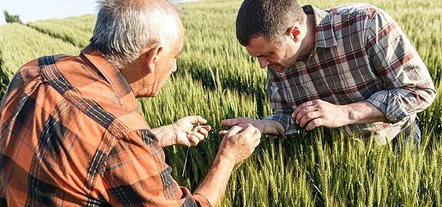 Landwirte und Bauern