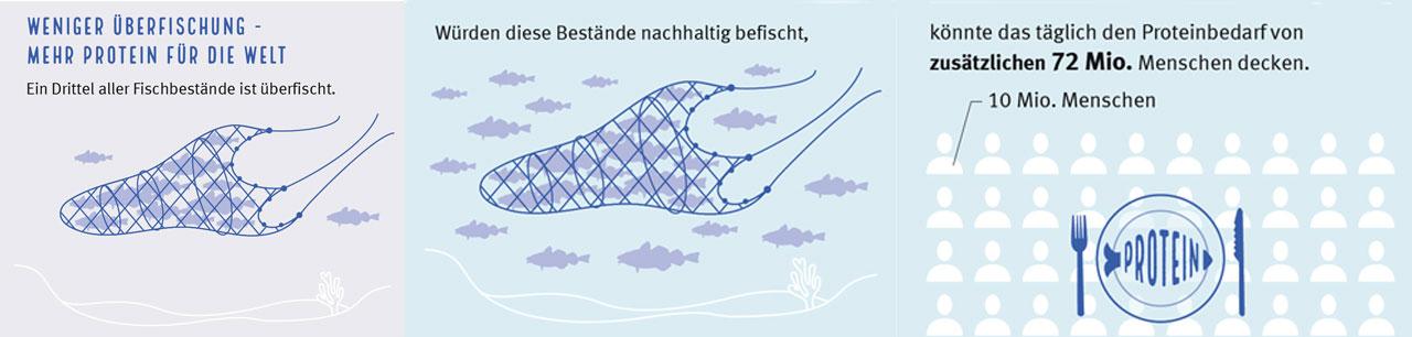 Fischkonsum nachhaltige Fischerei MSC Analyse