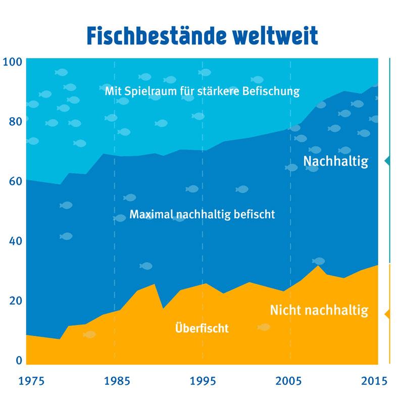 MSC Überfischung Fischkonsum