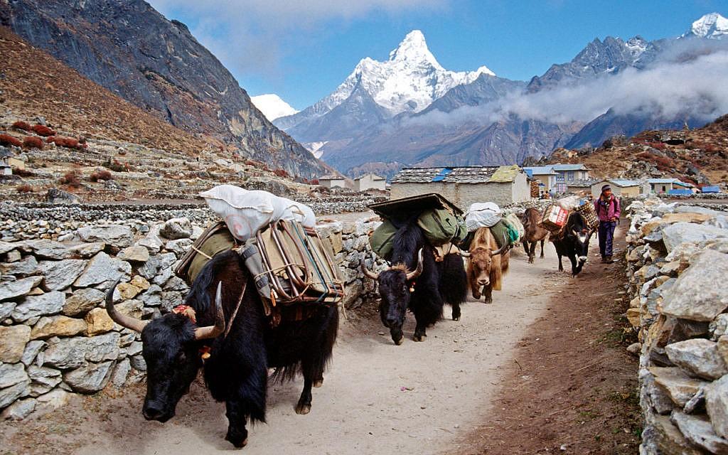 Unterwegs nach Namche Bazar