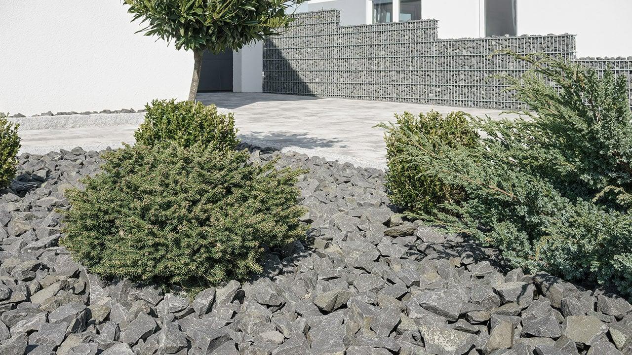Schottergarten-Deshalb-sollte-er-deutschlandweit-verboten-werden