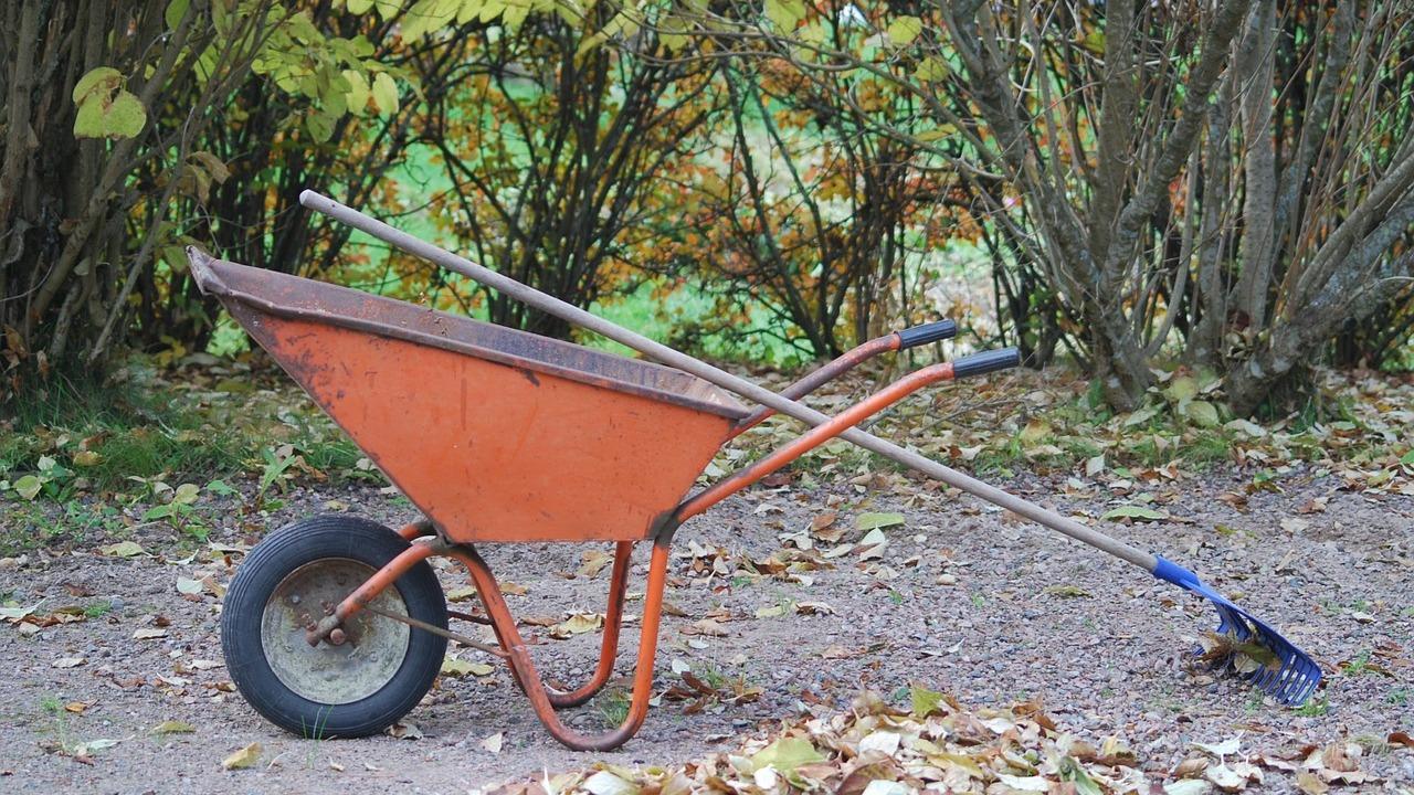 Gartenarbeit im Oktober: Das ist jetzt zu tun