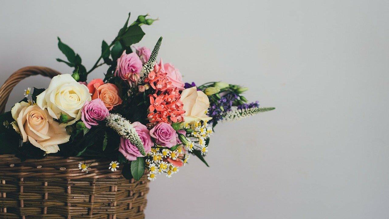 Slowflower: Die Bewegung für nachhaltige Schnittblumen