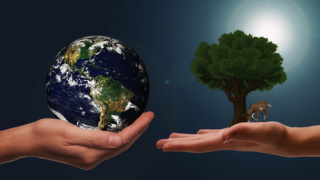 Umweltethik: Welche Verantwortung haben wir?