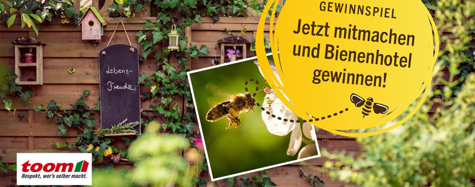 toom Bienenhotel gewinnen