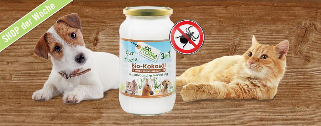 Kokosöl für Tiere