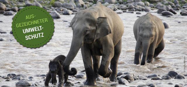 Umweltschutz mit dem WWF