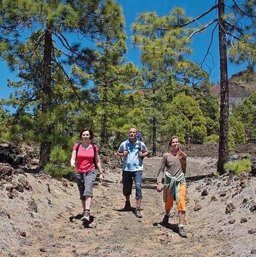 Wikinger Reisen Urlaub auf Teneriffa gewinnen
