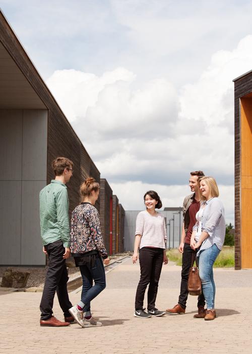 Bachelorstudiengang Wirtschaft neu denken