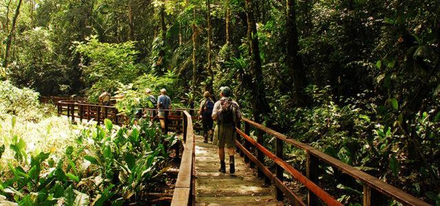 Wikinger Reisen Costa Rica