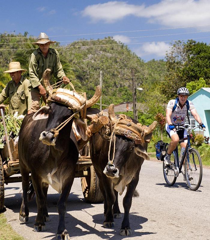 Wikinger Reisen unterwegs mit dem Fahrrad