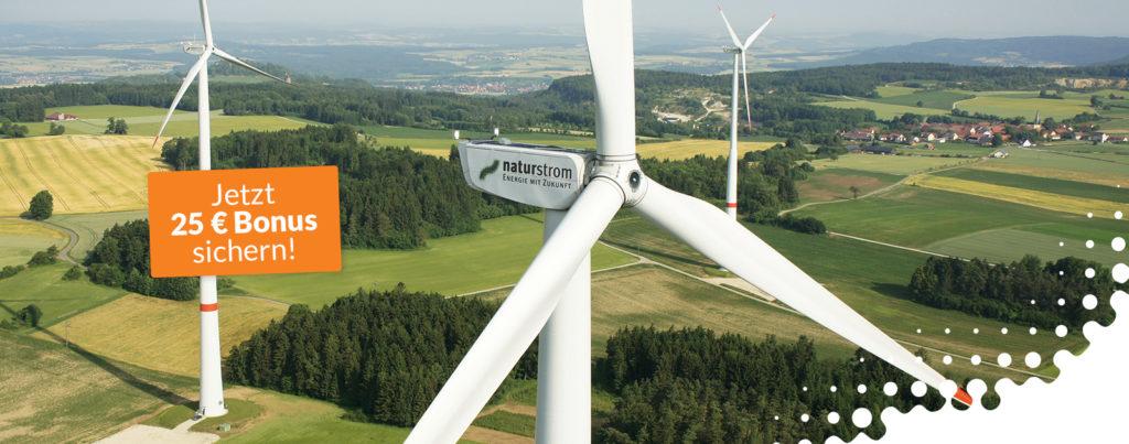 naturstrom – 100 Prozent Ökostrom
