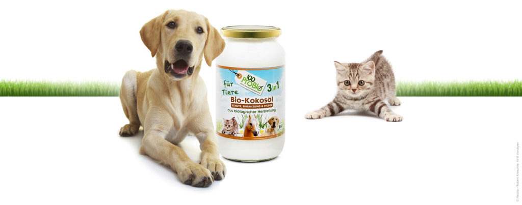 Gesundes Fell mit 100probio kokosöl für Tiere natürlicher zeckenschutz haustier pflege