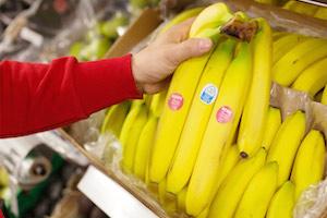 Einen Teil des Erlöses aus dem Verkauf von Bananen spendet REWE an den Bananenfonds.