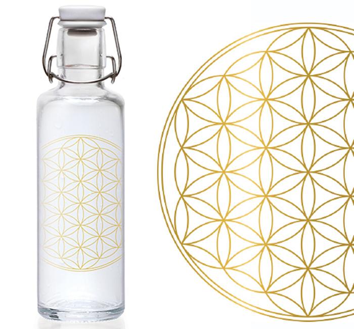 nachhaltige Glasflaschen